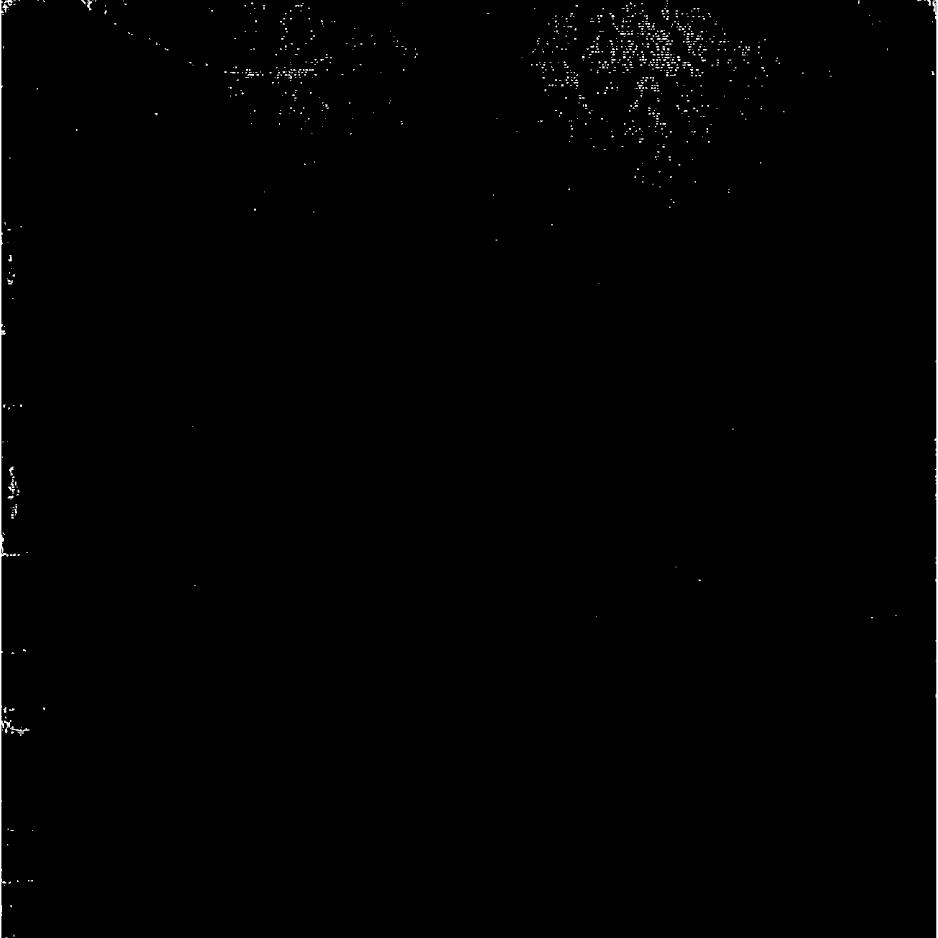 Book 8 The Collected Free Verse of John Hewitt 1925-1929
